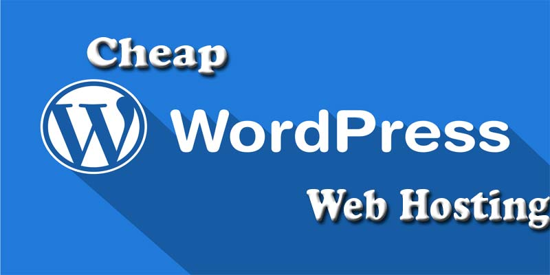 Cheap WordPress Hosting India